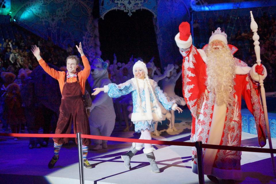 Цирковые представления на новый год 2017