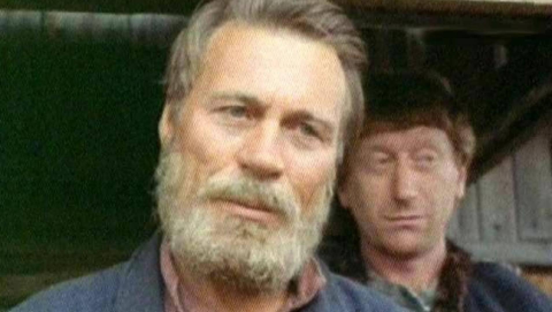 Большое золото мистера Гринвуда - Фильм, Триллер