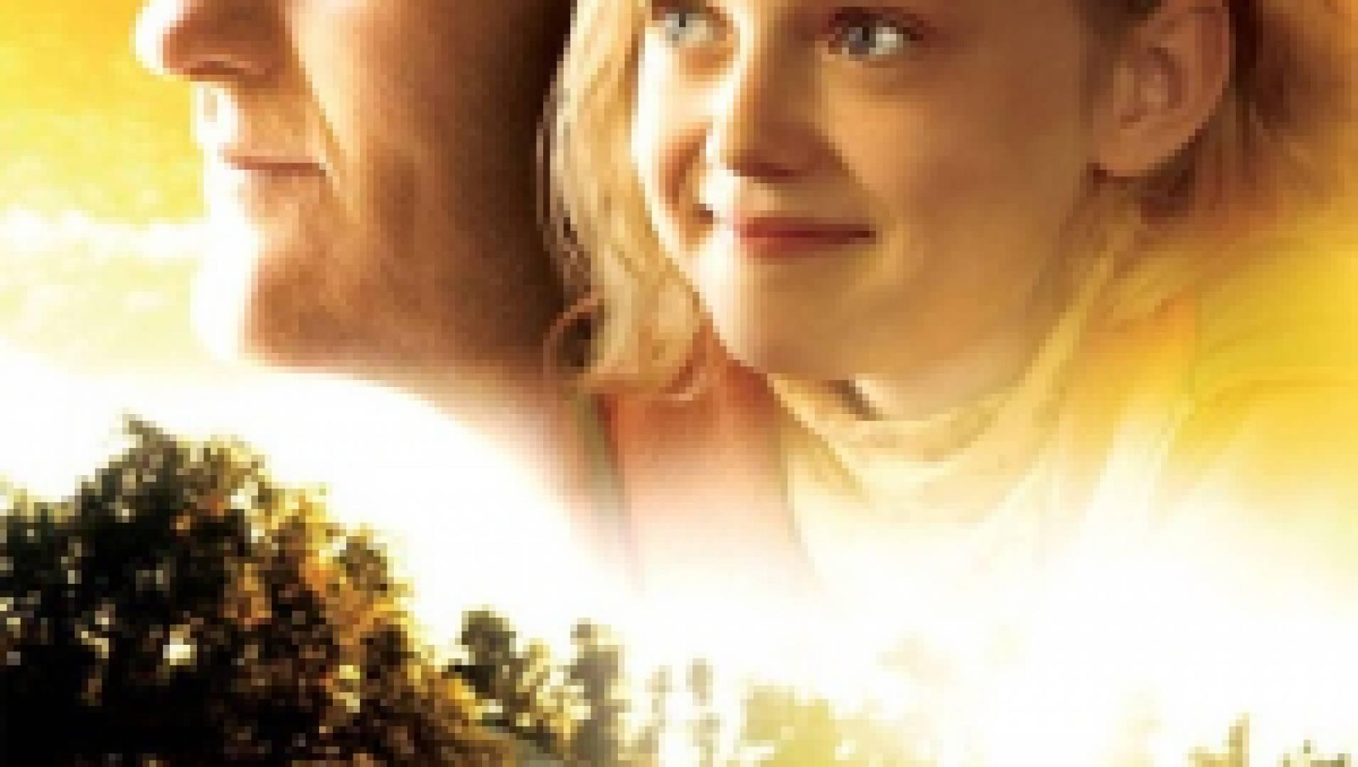 Мечтательница - Фильм, Драма