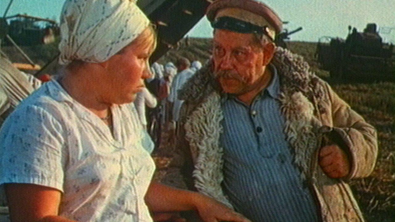Стряпуха - Комедия, Фильм