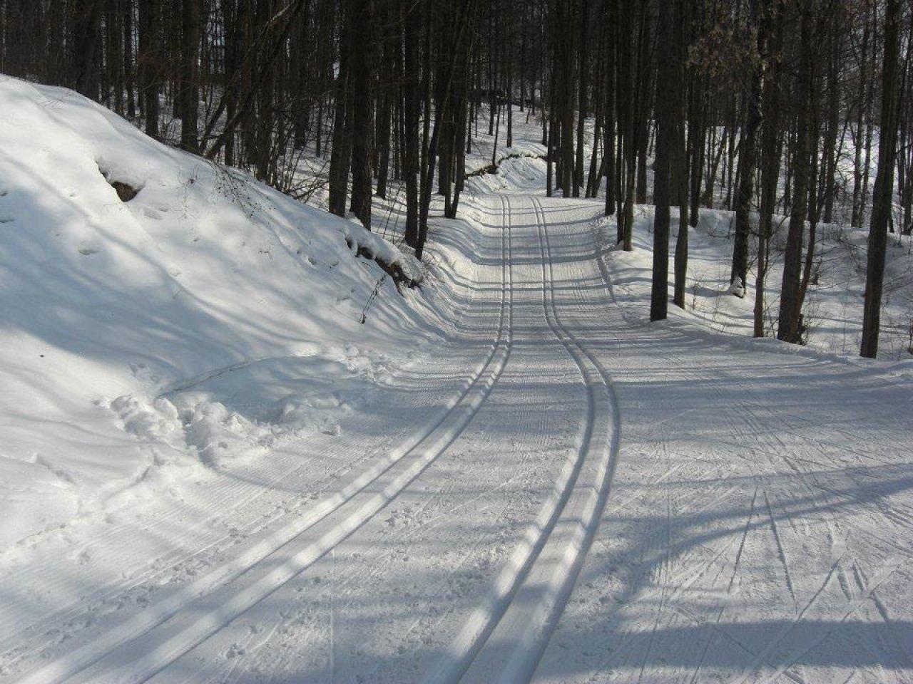 Красногорская лыжня