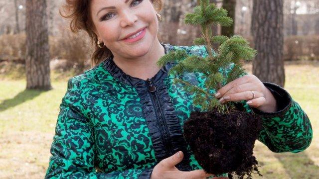 Новые октябрьские серии программы «Дачные феи» на телеканале «Бобёр»