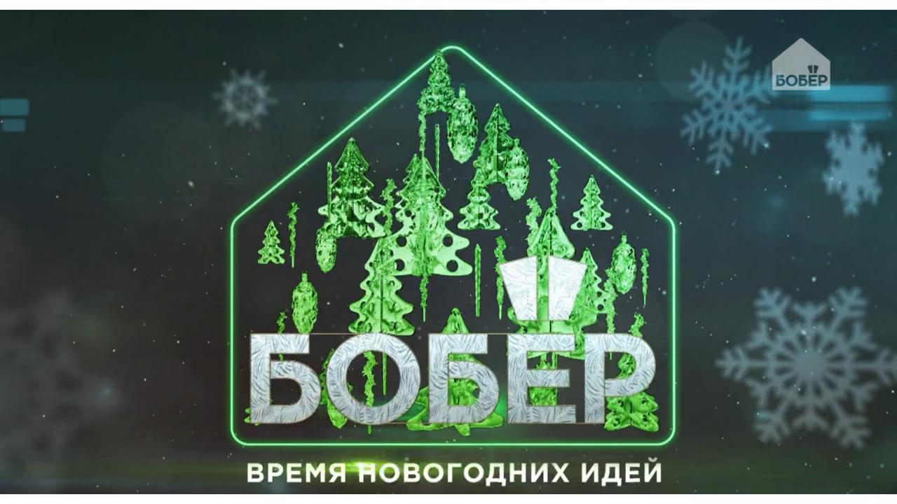 «Время новогодних идей» — на телеканале «Бобёр»!
