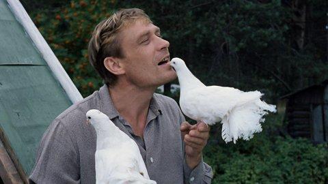 СЛОЖНЫЙ ТЕСТ на знание фильма «Любовь и голуби»