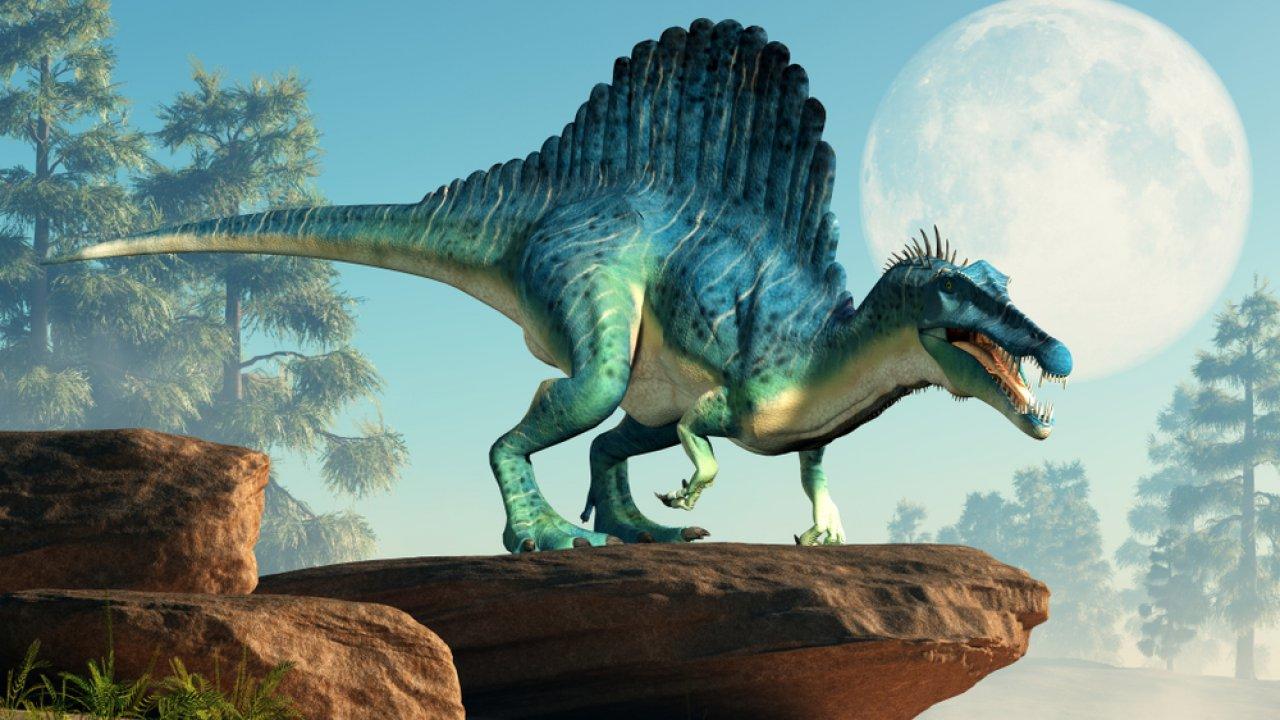 Тест! Угадайте, что за динозавр
