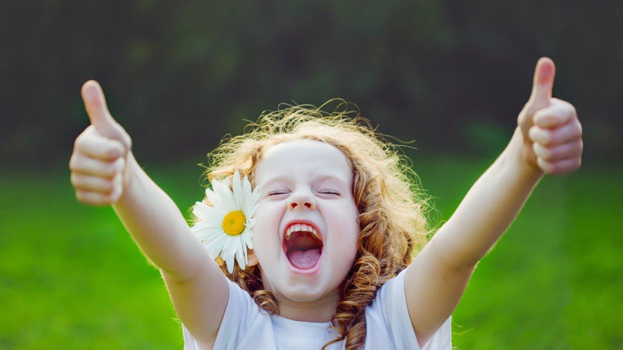 ТЕСТ: Угадайте полевой цветок!