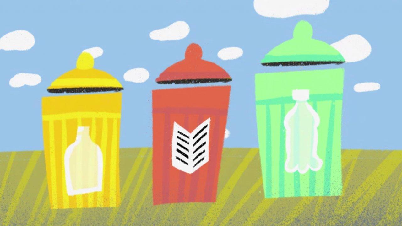 «Зелёный проект»: умеете ли вы заботиться о природе?