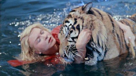 ТЕСТ: Угадайте, из какого фильма животное?