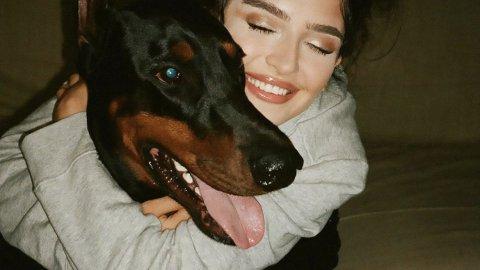 Какая порода собак тебе подходит?